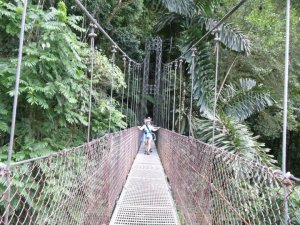 Hanging bridges so you get a sense of the heights we climbed